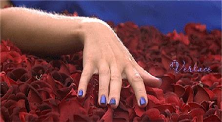 Анимация Девушка в синем шелковом платье балдеет лежа на лепестках красных роз, от Versace