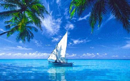 Анимация Парусная лодка дрейфует на воде под пальмами