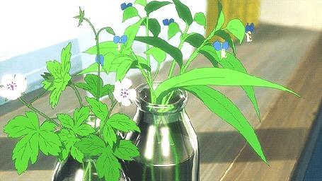 Анимация Цветы в бутылочках стоят на подоконнике и колышатся от ветра
