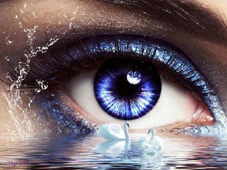 Анимация Глаз девушки у озера с лебедями