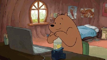 Анимация Мишка сидит за компом днями и ночами напролет, мультсериал We Bare Bears / Вся правда о медведях / Мы обычные медведи