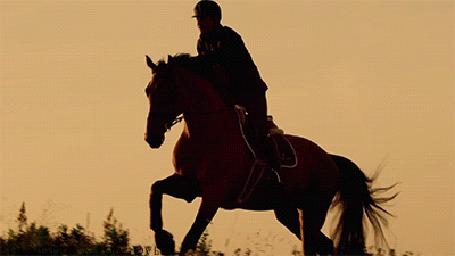 Анимация Всадник скачет на коне