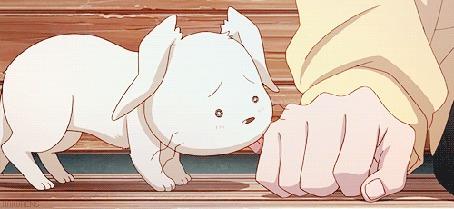 Анимация Щенок лижет руку хозяина
