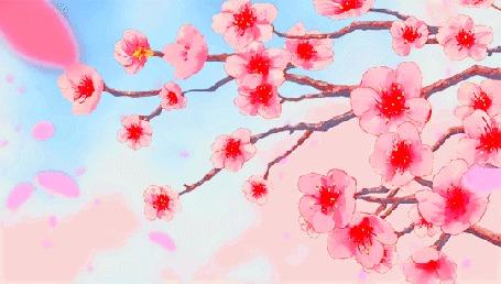 Анимация Листья падают с веток сакуры, кадр из аниме Прекрасна, как луна / Tsuki ga Kirei
