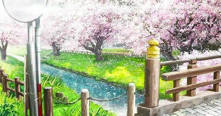Анимация Вид с мостика на речку и на цветущие деревья сакуры, кадр из аниме Прекрасна, как луна / Tsuki ga Kirei