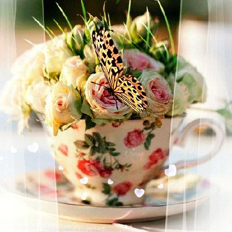 Анимация Бабочка на цветке