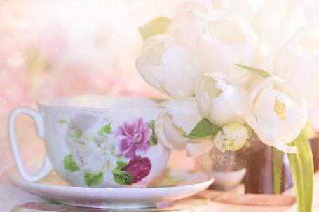 Анимация Чашка на блюдце стоит рядом с цветами