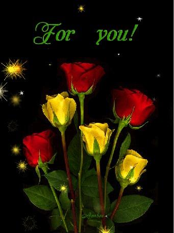 Анимация Желтые и красные розы на черном фоне, (for you / для тебя)
