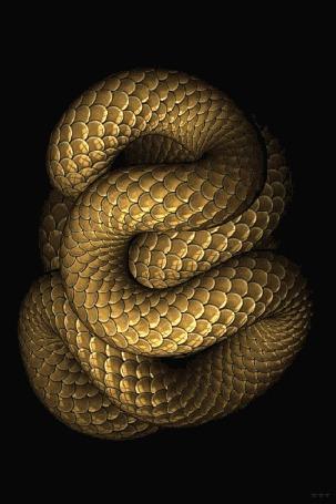 Анимация Извивающаяся кольцами огромная золотая змея на черном фоне