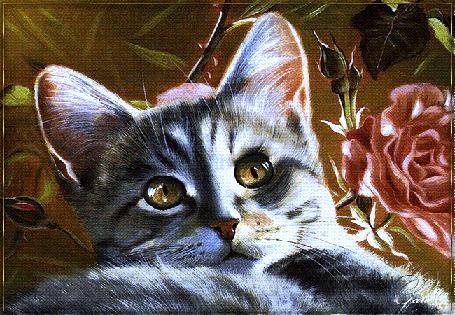 Анимация Моргающий серый котенок