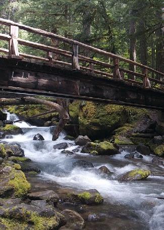 Анимация Река в лесу и мост через нее