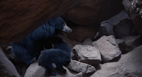Анимация Медведь - губач пестует своих медвежат