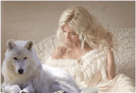 Анимация Девушка сидит рядом с волком