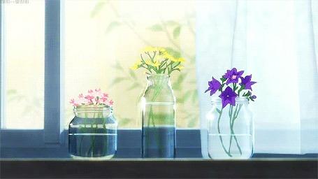 Анимация На окне стоят баночки с цветами