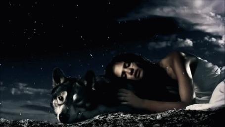 Анимация Девушка с собакой под падающими лепестками