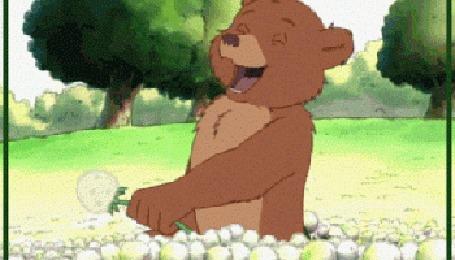 Анимация Медведь дует на одуванчик