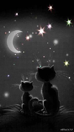 Анимация Парочка кошек любуется луной и звездами в ночи, by Akela 73