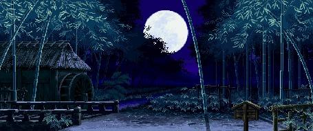 Анимация Сильный ветер сгибает кроны деревьев, в небе светит полная луна