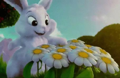 Анимация Кролик шлепает лапкой по ромашке, The Simpsons Movie / Симпсоны в кино