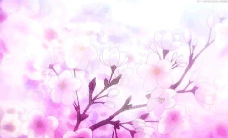 Анимация Слетающие лепестки с весеннего дерева сакуры