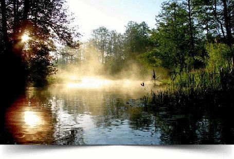 Анимация Мелкий дождик ранним утром над озером