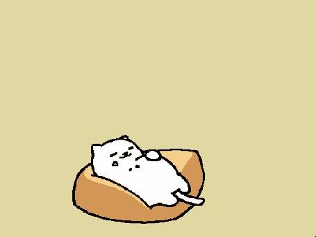 Анимация Милый танцующий кот