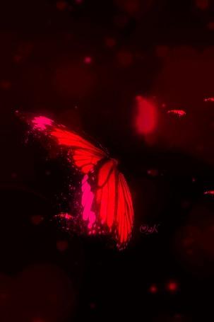 Анимация Бабочка порхает в блестках