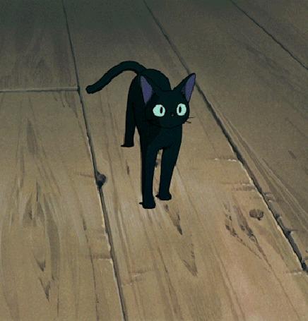 Анимация Jiji / Джиджи вопросительно мяукает, аниме Kikis Delivery Service / Ведьмина служба доставки