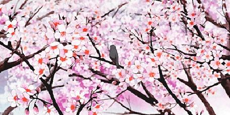 Анимация Птичка слетает с весеннего цветущего дерева