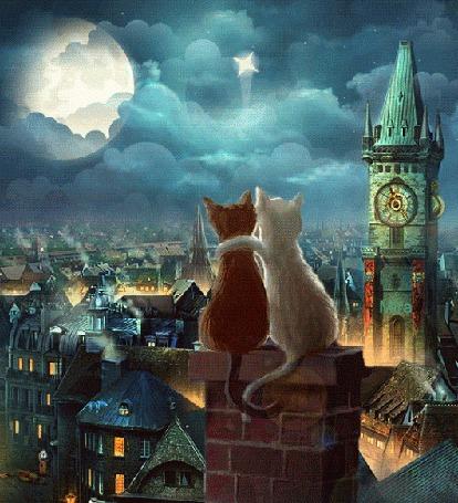 Анимация Коты сидят на крыше и наблюдают за плывущими облаками