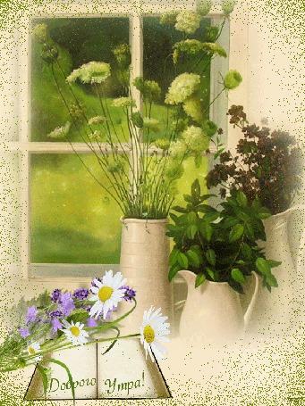 Анимация На столе у окна ваза с цветами, кувшины с травами, лежит книга, на которой ромашки, васильки, в окно светят лучи утреннего солнца, (Доброго утра!)