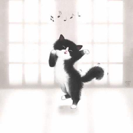 Анимация Веселый котик танцует под музыку, by Kate Park