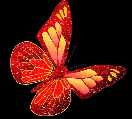 Анимация Красная переливающаяся бабочка