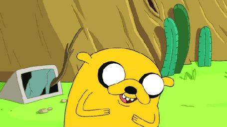Анимация Пес Jake / Джейк над чем - то весело смеется, мультсериал Adventure Time / Время приключений