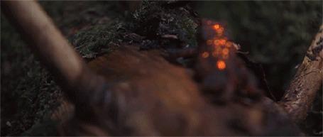 Анимация Лягушка сидит на бревне