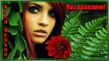 Анимация Среди листьев папоротника стоит девушка с цветком (Поздравляю! Ивана Купала)
