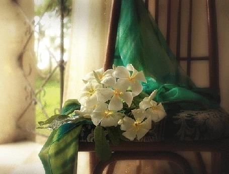 Анимация Букет белых цветов лежит на стуле