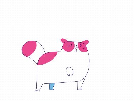 Анимация Кот играется на белом фоне