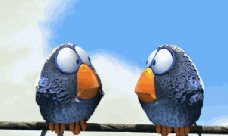 Анимация Эпизод из видеоигры Angry Birds Rio