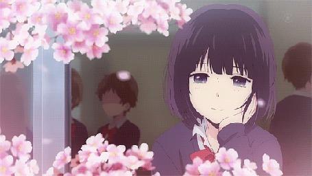 Анимация Ханаби Ясураока / Hanabi Yasuraoka из аниме Тайные желания отвергнутых / Kuzu no Honkai смотрит в окно на падающие лепестки сакуры