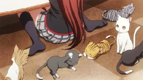 Анимация Котята лежат и сидят на полу перед Рин Нацумэ / Rin Natsume, сидящей к ним спиной, кадры из аниме Маленькие проказники! / Little Busters!