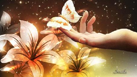 Анимация Бабочка на пальце у девушки на фоне цветов