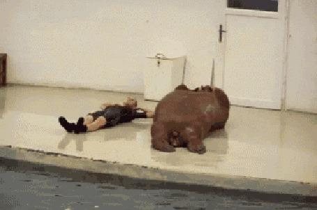 Анимация Девушка качает пресс вместе с моржом, лежащим рядом