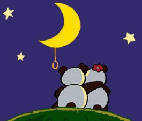 Анимация Две влюбленные панды выключают свет луны и смотрят на салют из сердечек