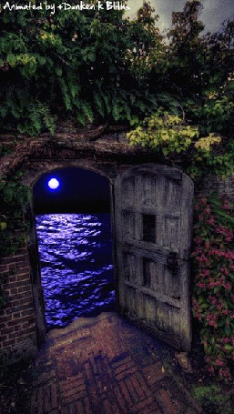 Анимация За открытой дверью виднеется море, по которому лунный свет проложил дорожку, by Danken k Bittus