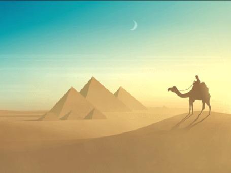 Анимация Верблюд с человеком на нем идет по пустыне
