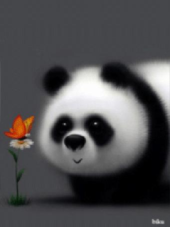 Анимация Панда любуется цветком, на котором сидит ярко окрашенная бабочка, by biku