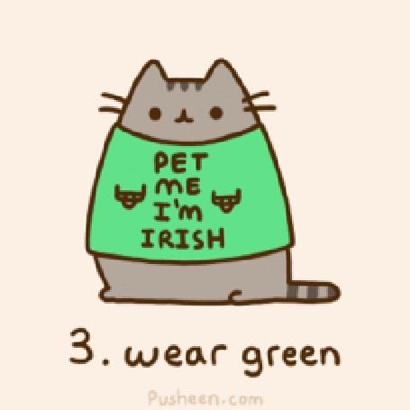 Анимация Кот Пушин в майке с надписью Pet Me Im Irish / Погладь меня, я ирландец (3. wear green)