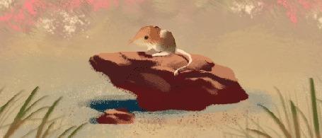 Анимация Мышка сидит на камне