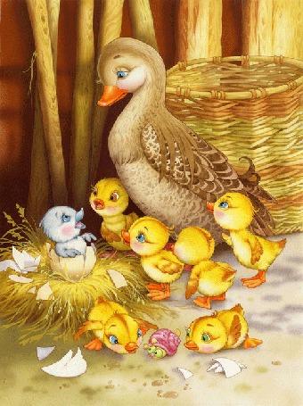 Анимация Мама утка с утятами стоят над гнездом, в котором из яйца вылупился гадкий утенок